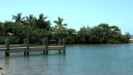 Small jetty in the Florida Keys video