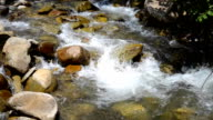 small mountain river with big stones video