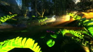 Small pond in mystical forest video