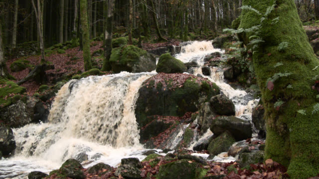 Small Scottish waterfall swollen by heavy rain in late autumn video