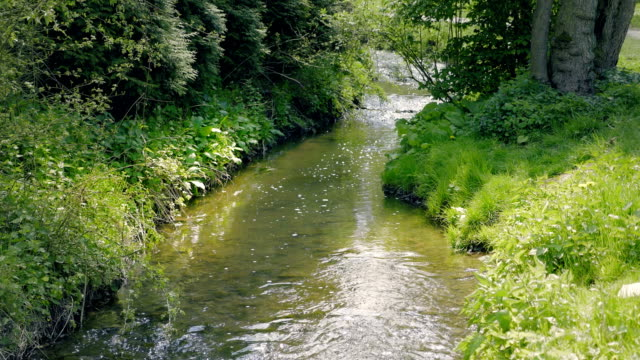 Small stream flowing through picturesque valley with meadows and forests. video