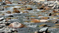 small waterfall in a small creek at Ladakh, Northern India video