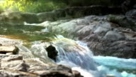 Small waterfall in forest video