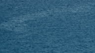 HD: Small wavy blue water video