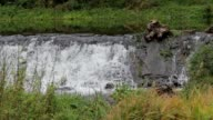 Small weir in a river video
