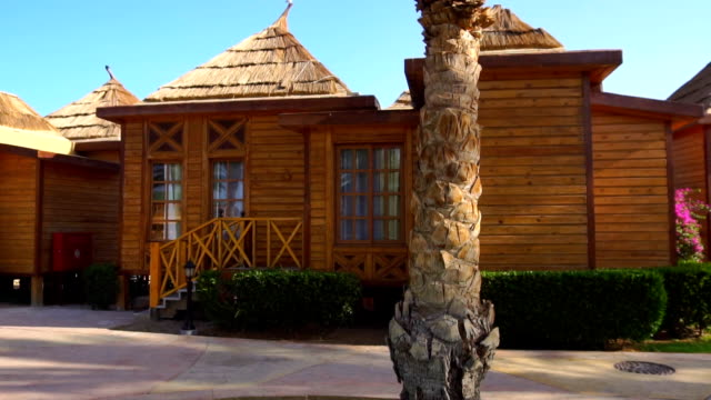 small wooden houses and palm tree at bright sunny day video