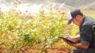 Smart Farmer video