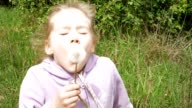 Smiley little girl blows off dandelion and laughs video