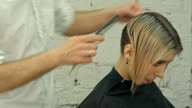 Smiling client sitting in a hair salon while hairdresser is combing her hair. Focus on client video