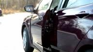 Smiling driver in opened car door video