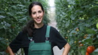 Smiling farmer standing arms akimbo in greenhouse video