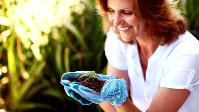Smiling mature lady holding a young plant video