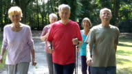 Smiling senior friends holding hiking poles while walking in park video