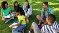 Smiling students chatting together outside on campus video