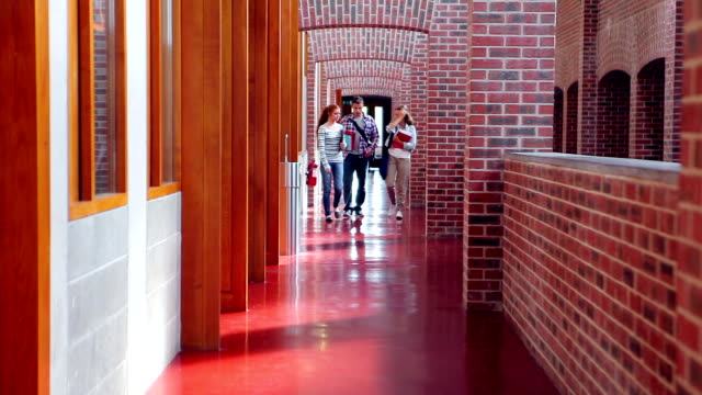 Smiling students walking down the hall video
