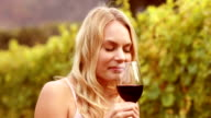 Smiling woman smelling a red wine glass video