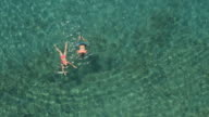 AERIAL: Smiling young couple swimming in the ocean towards beautiful wild beach video