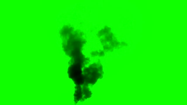 Smoke from a Fire video