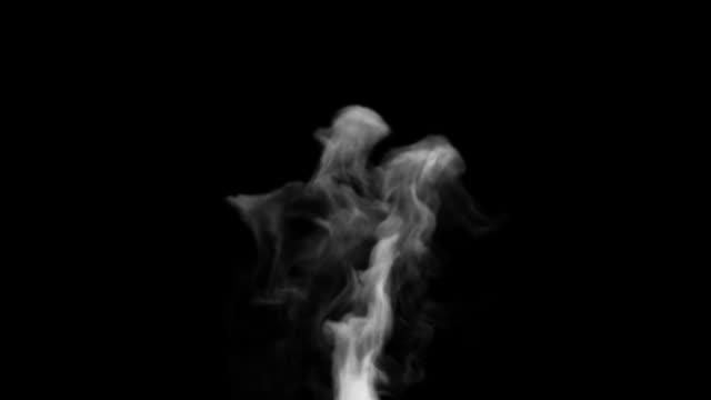 Smoke plume video