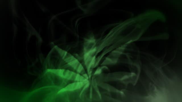 Smoked marijuana leaf. video