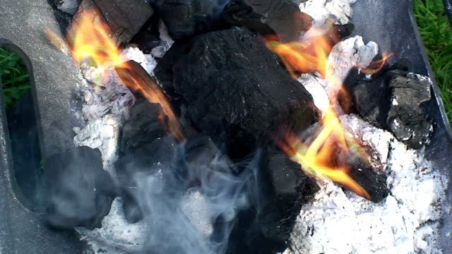 Smoking barbecue video