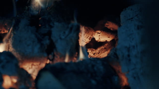 Smoldering coals, fire and ash video