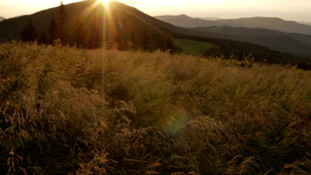 smooth movement along grass in the mountains during a sunset video