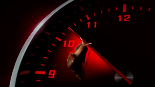 Snail slowly crawling on face of clock video