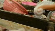 Snakehead fish spliting 1 video