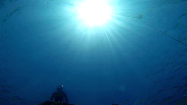 Snorkeling, Dramatic view from below. video