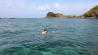 Snorkeling in the sea video