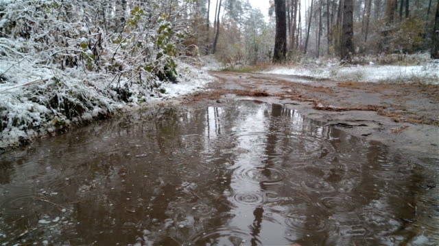 Snow and rain falls in a puddle. video