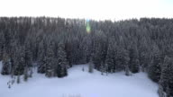 Snow Covered Mountain Forest video