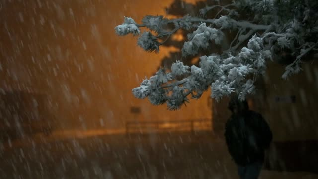 Snow Fall Seamless Loop video
