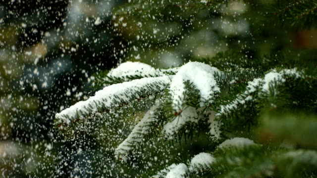 Snow falling on Christmas tree, slow motion video