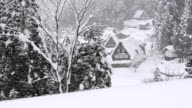 Snow falling on the tree,in Toyama,Japan video