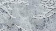 Snow falling video