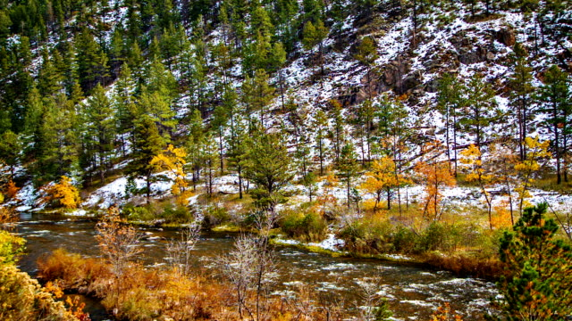 Snow, forest, mountain and river video