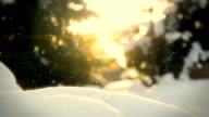 Snow in the garden loop video