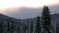 Snow Scene video