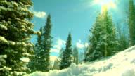 Snow Sports! HD video