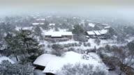 Snow storm in Sedona video