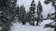 Snowboarder goes through trees video