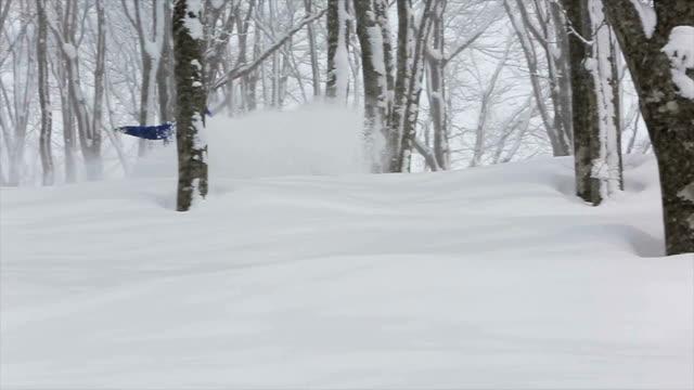 Snowboarding Powder in Japan 5 video