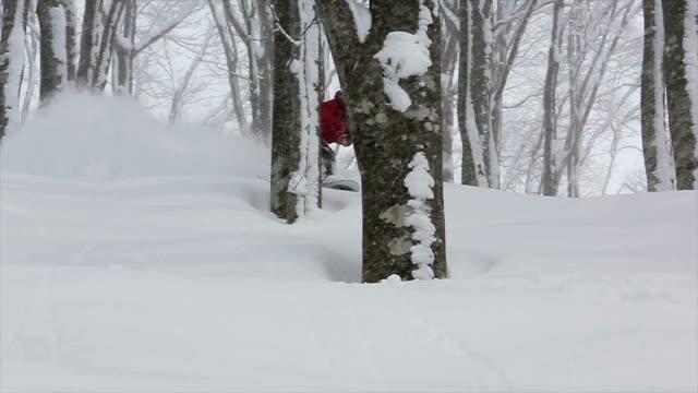 Snowboarding Powder in Japan 6 video