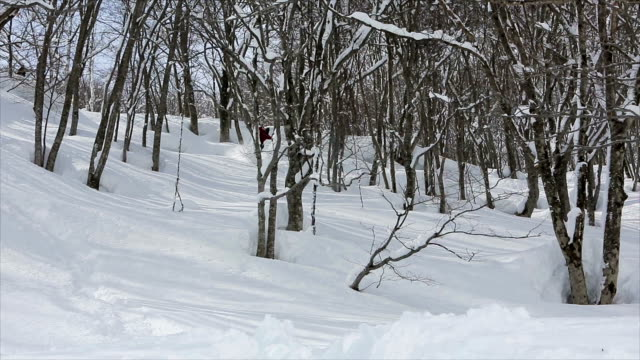 Snowboarding Powder in Japan 7 video