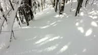 FIRST PERSON VIEW: Snowboarding through dense forest in snowy mountains video