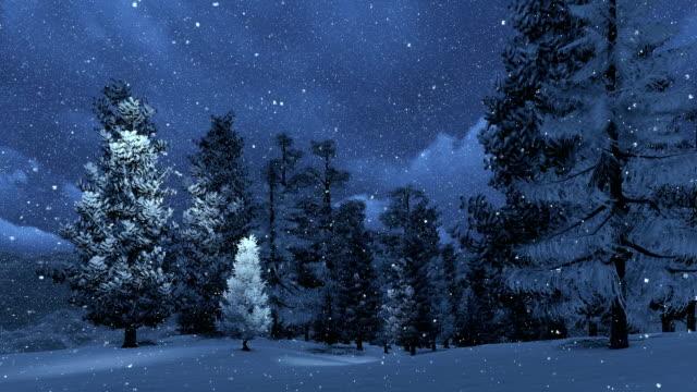 Snowbound pinewood and snowfall at night video