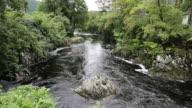 Snowdonia National Park river flowing through beautiful Welsh tourist destination video