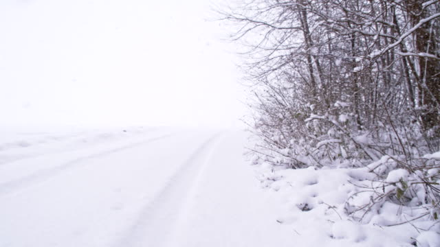 SLO MO Snowed Road Along The Forest video